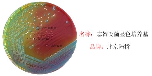 志贺氏菌显色培养基